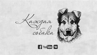 """""""Каждая собака...""""_Трейлер фильма"""