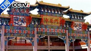 《华人世界》 20170124 | CCTV-4