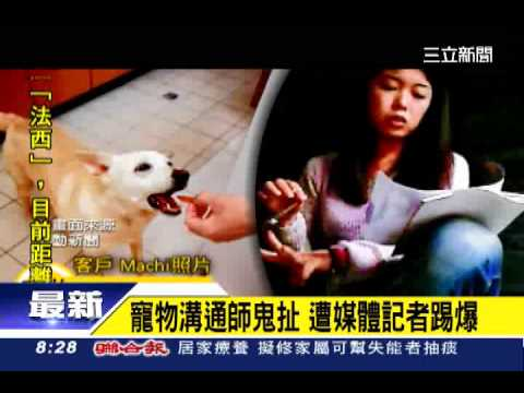 寵物溝通師鬼扯 遭媒體記者踢爆|三立新聞臺 - YouTube