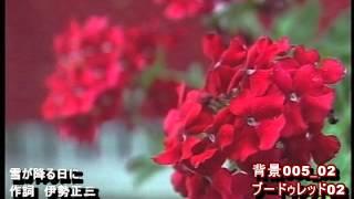 KaguyaHime Yukinohuruhini karaOK Of Japanese Song.