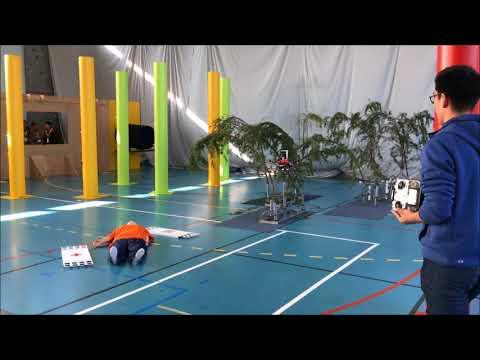 NUS UAV Team at IMAV 2017