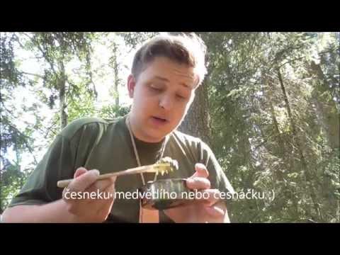 Vaření v přírodě : Kopřivový špenát