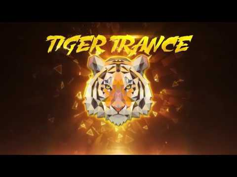 TIGER TRANCE Official Audio Teaser