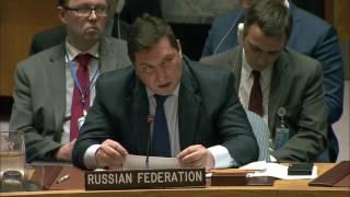 Выступление В.К.Сафронкова по принятию резолюции Совета Безопасности ООН по КНДР