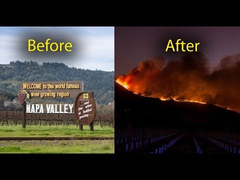 Forest Fires California Napa Valley Region, before and after wildfires in wine region