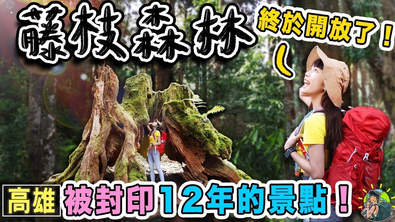 12年的等待!開箱超神秘的藤枝森林遊樂區|高雄景點