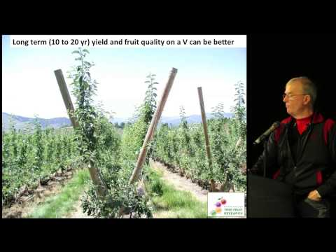 Beating Apple Replant Disorders