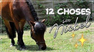 12 CHOSES À SAVOIR SUR NICKEL 🐴