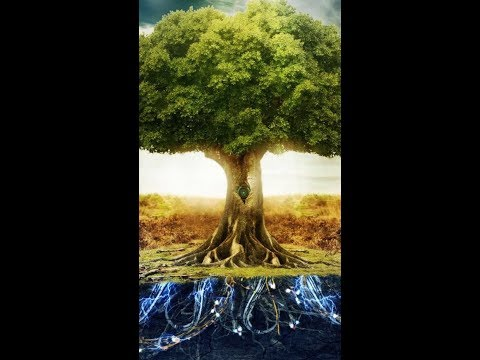 Daily Chidush: Learn The Purpose of Life From Adam