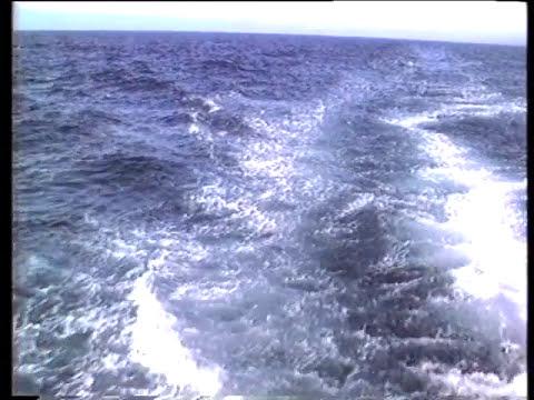 Что нашли в Балтийском море?
