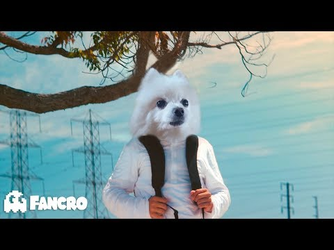 Marshmello - Alone (Video Oficial) - Cover Gabe The Dog