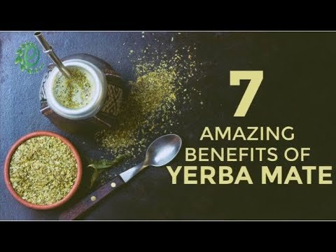 7 Reasons Why You Should Drink Yerba Mate Instead Of Coffee | Organic Facts