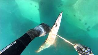 Pescasub escolleras de tenerife Equipo CKV&FFSUB tenerife Jack Charles Williams