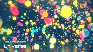 Rose in many Colors 「Universe」