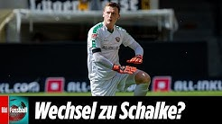 Torhüter vor Wechsel: Hält Dresdens Schubert bald so für Schalke oder Arsenal?