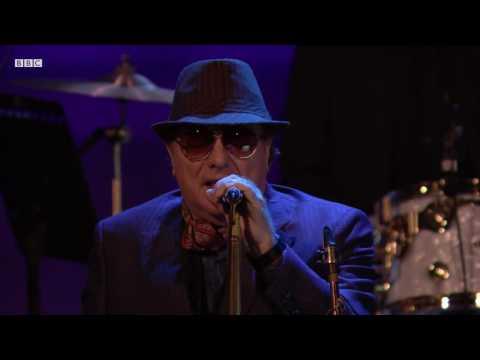 Van Morrison - Too Late (Radio 2 In Concert 2016)