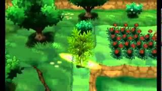 Pokemon X/Y - TM22 Solar Beam Location