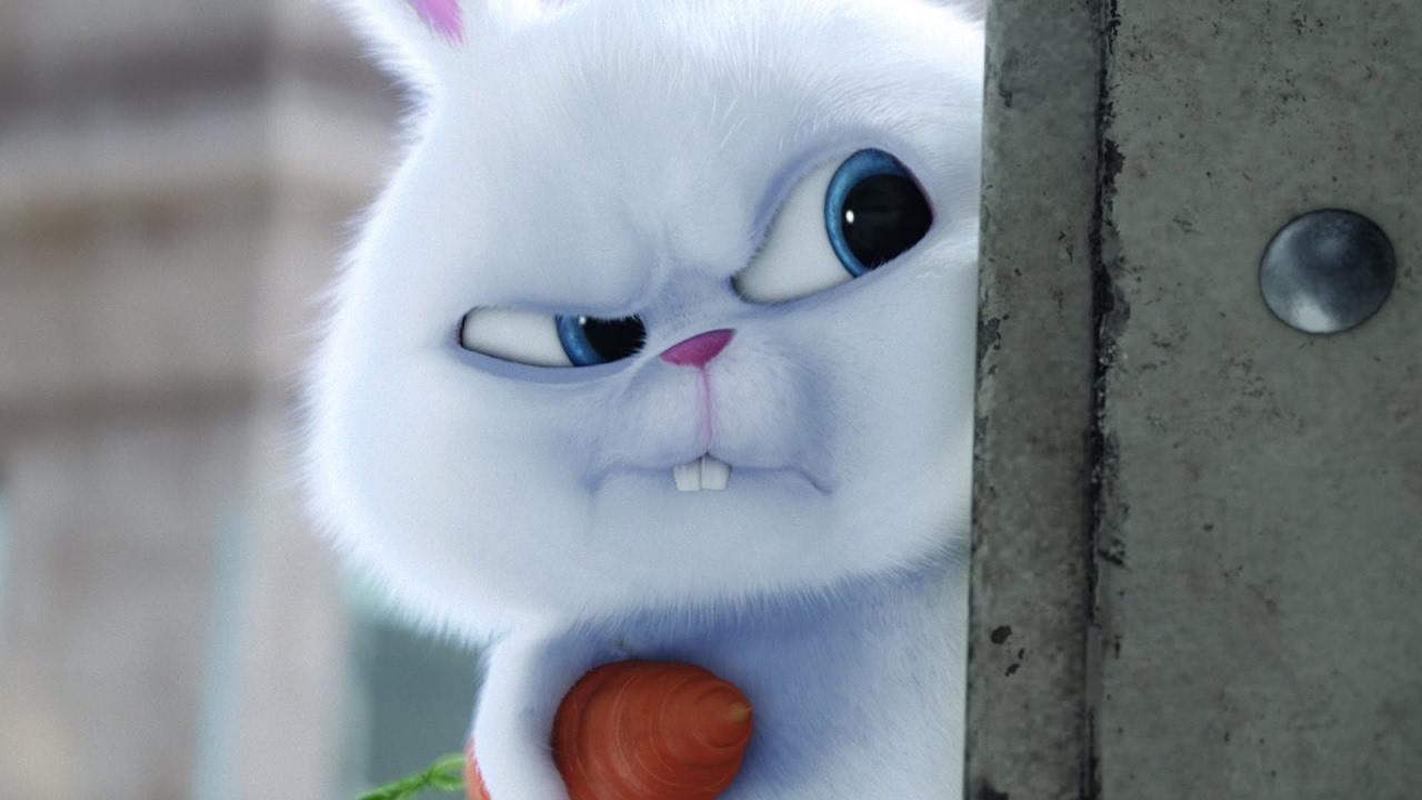 Картинки заяц с морковкой из мультика, открытка картинки