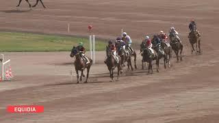 Vidéo de la course PMU PRIX JEAN TORTEL