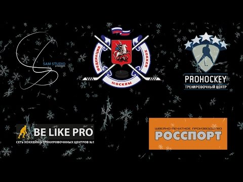 Team Moscow vs ХК Металлург (Видное)
