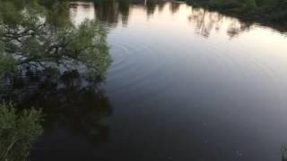 Рыбачим бреднем(Рыбалка в калужской области., 2016-06-06T08:43:45.000Z)