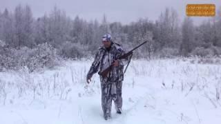 Зимняя охота на зайца и тетерева