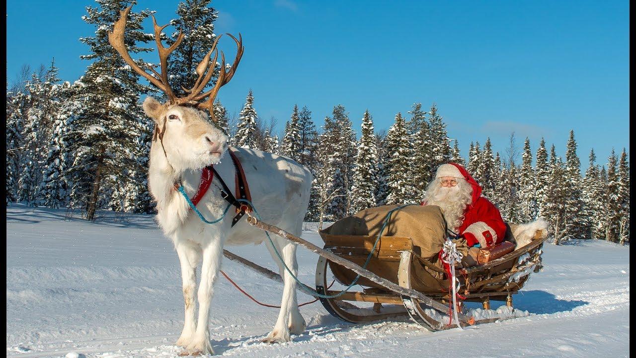 Babbo Natale Polo Nord.Partenza Di Babbo Natale E Renne Lapponia Messaggio Di Santa Claus Rovaniemi Finlandia Buon Natale Youtube