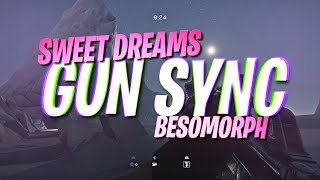 Besomorph - Sweet Dreams - Rainbow Six Siege Gun Sync