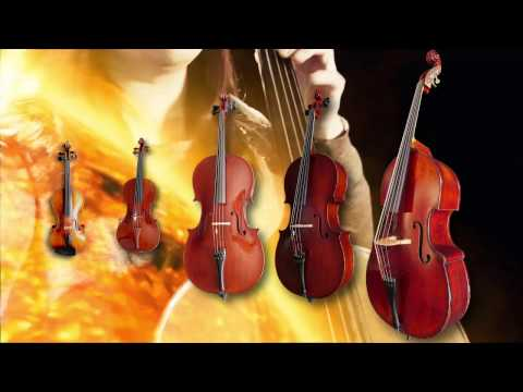 Best Service - Chris Hein Solo Strings Overview