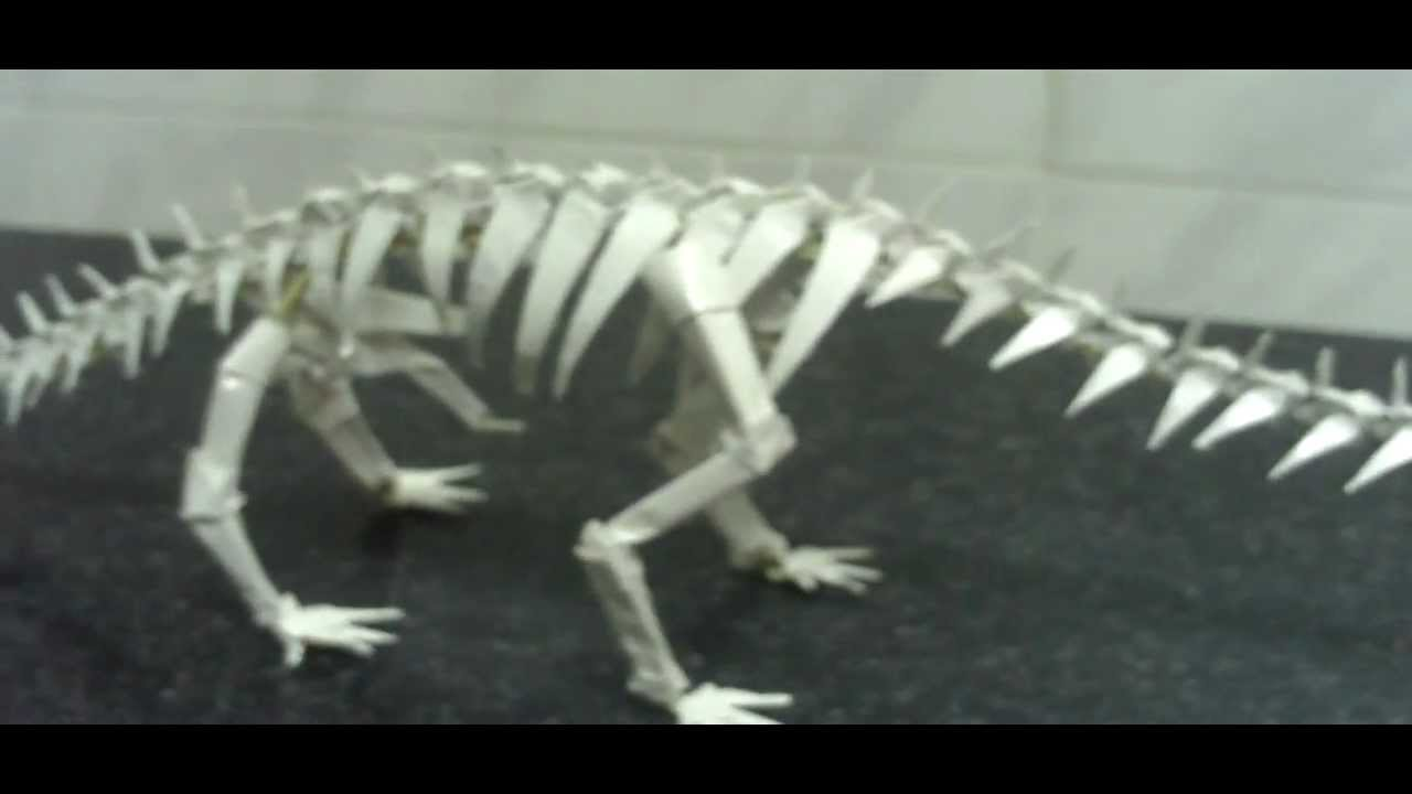 Esqueleto de Apatosaurio - YouTube