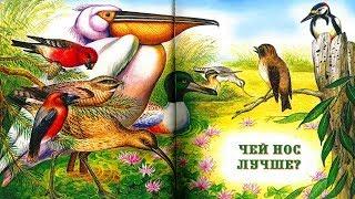 ЧЕЙ НОС ЛУЧШЕ? Виталий Бианки аудио сказка: Аудиосказки-Сказки на ночь.Слушать сказки онлайн