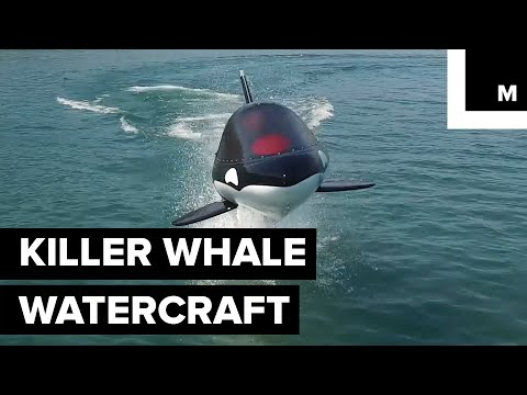 Killer Whale-Inspired Watercraft