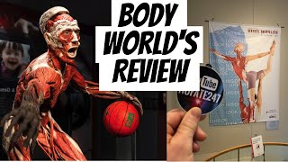 Body Worlds The Cycle of Life Exhibit Review   Boston's Museum of Science