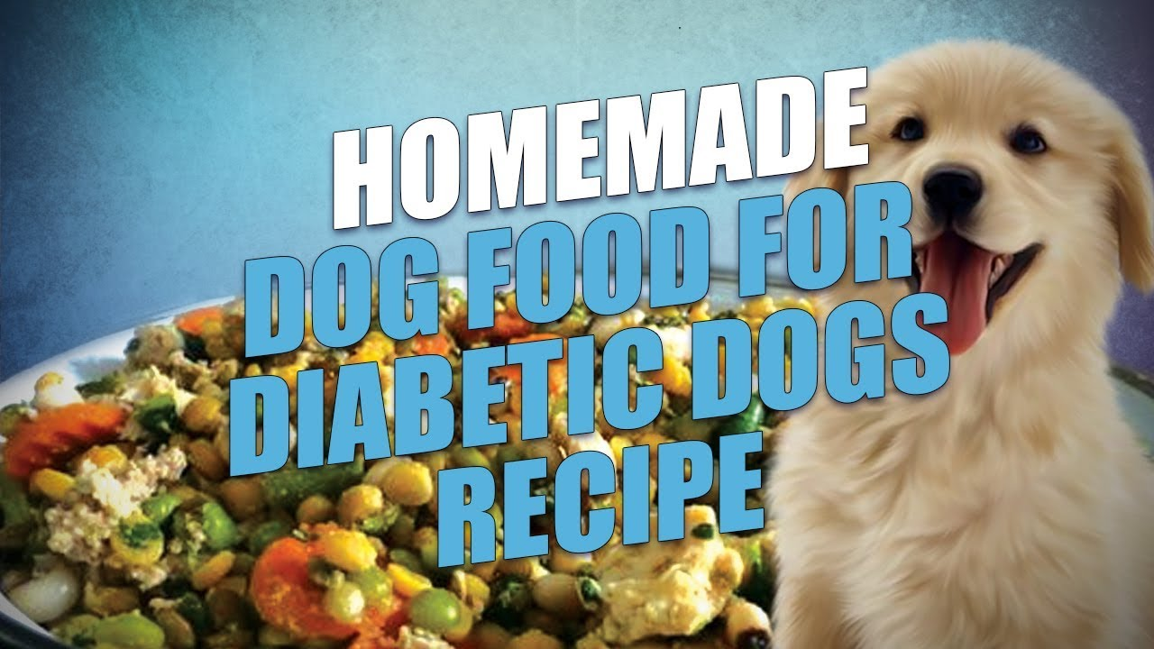Homemade dog food for diabetic dogs recipe easy to make youtube homemade dog food for diabetic dogs recipe easy to make forumfinder Image collections
