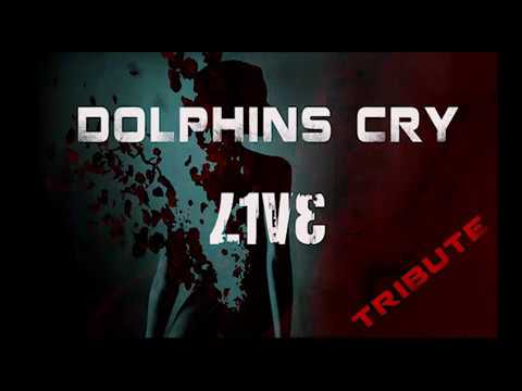 Live Tribute Dolphin's Cry