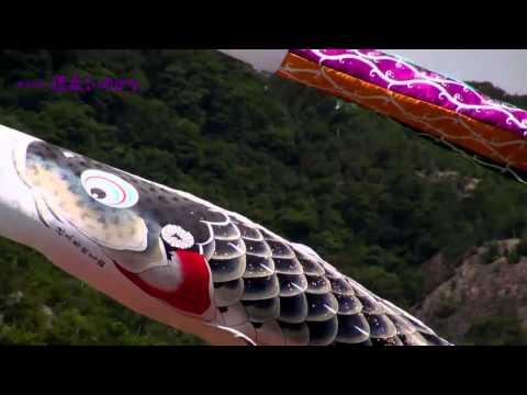徳永こいのぼりの動画『慶祝の鯉 吉兆』