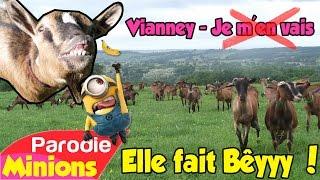 (Parodie Minions) Elle fait Bêyyy 🐐 (de Vianney - Je m