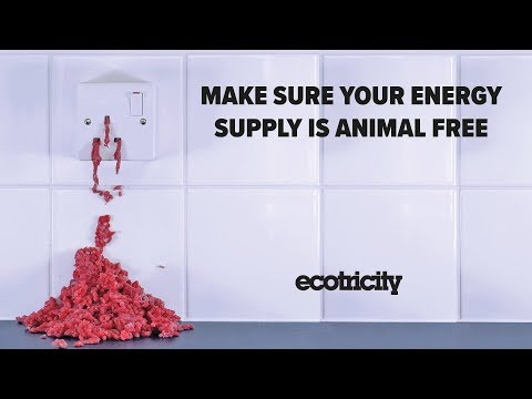 Vegan Electricity? What's in your energy supply?