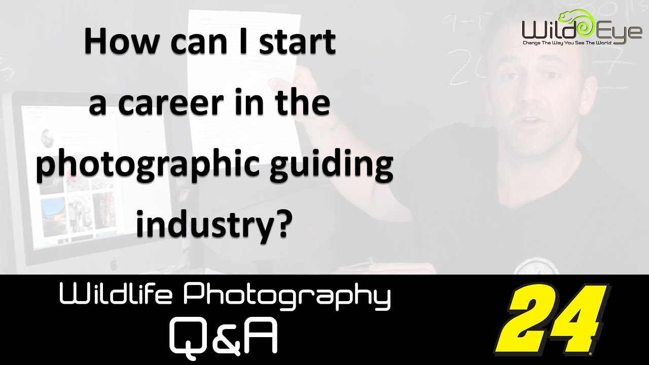 Wildlife Photography Q&A 24 - How to start a career in the photographic  guiding industry?