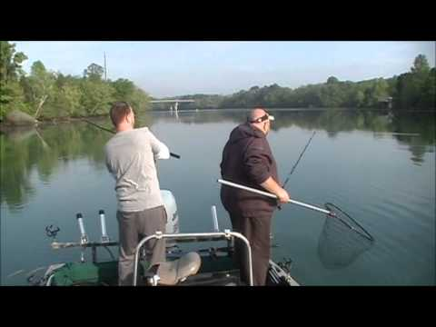 Watts Bar Tennessee Striper Fishing