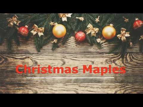 Christmas Maples at Callaway Gardens