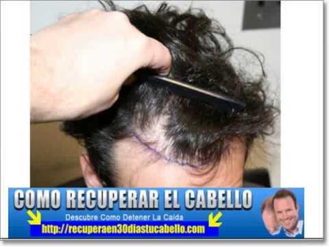 La máscara para las raíces de los cabello con la tintura del pimiento