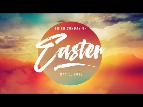 Weekly Catholic Gospel Reflection For May 5, 2019 | Third Sunday of Easter