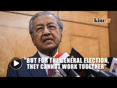 Dr M: Umno-PAS ties led to BN's victory in Semenyih