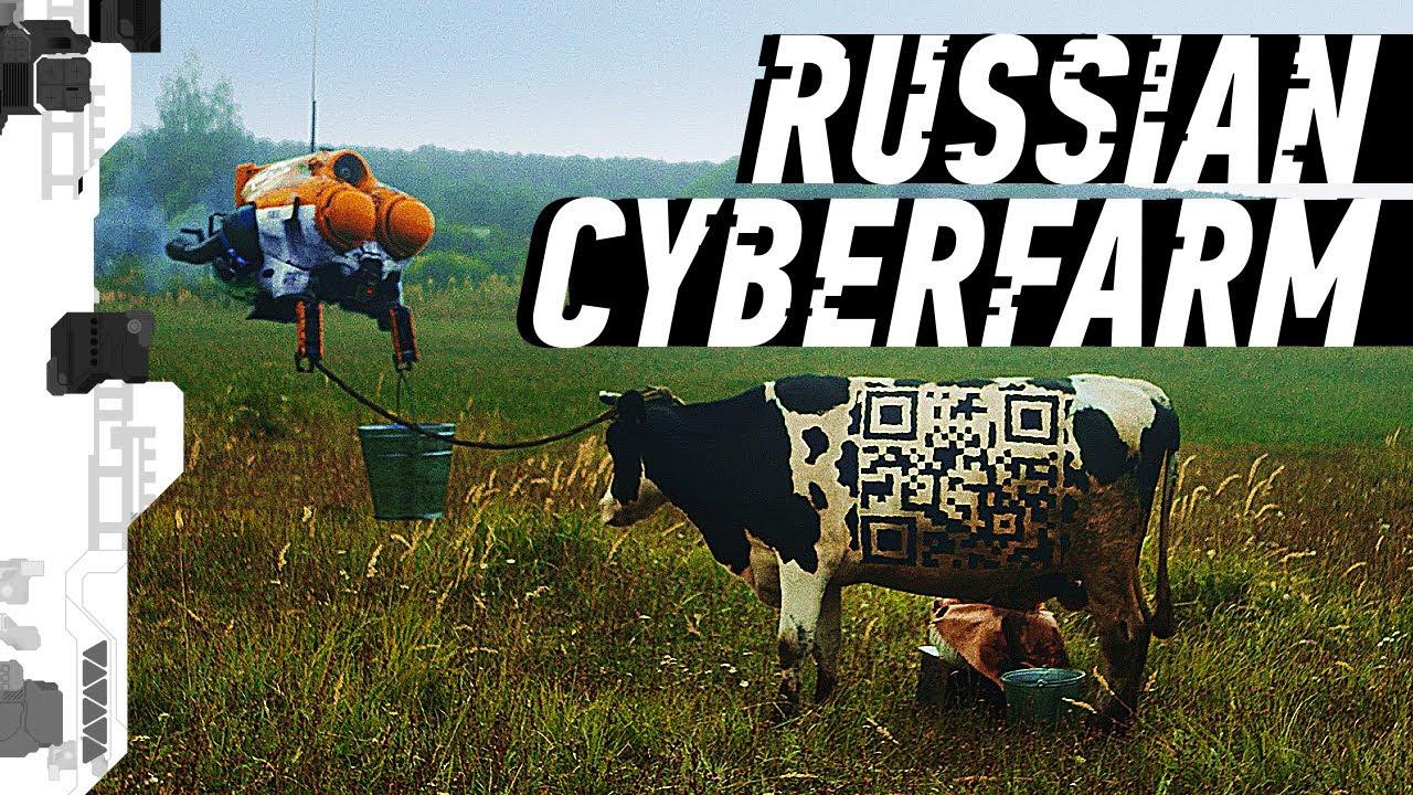 Коровы с QR-кодами и роботы-доярки. Так выглядит суровый рязанский киберпанк (видео)