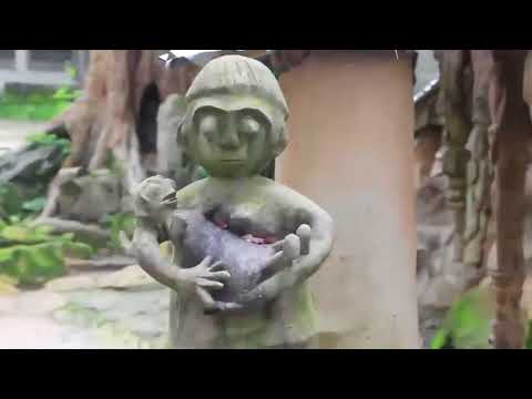 THE SACRED GROVE  OSOGBO