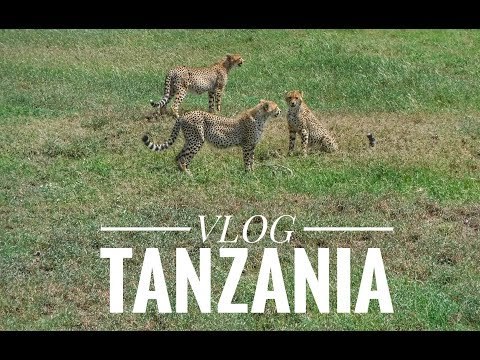TRAVEL VLOG : TANZANIA AS YOU HAVE NEVER SEEN