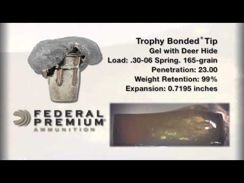 Federal Premium 174 Trophy Bonded 174 Tip Doovi