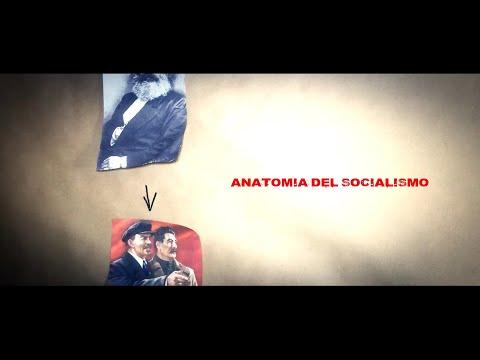 """""""Anatomía del Socialismo"""" por Marichal (No lo vas a escuchar en la radio)"""