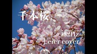 スローな千本桜です。 グンドルフクーン 39弦 ソプラノライアー A=432Hz...